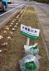 2018.5.19R124除草作業①